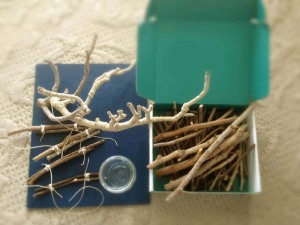 New Pile of Sticks Ready to Become the Next Tea Light Holder