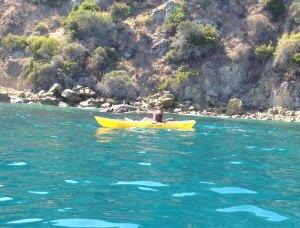 The rocky Catalina Island coast meets beautiful blue-green water.